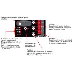 Cargador de baterias PROFESIONAL SKAN